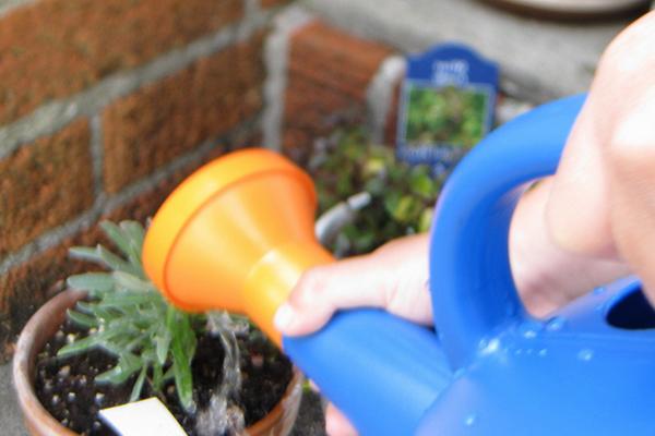Как сделать воду для полива кислой